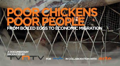 tvntv_header ENG_poor chickens_poor people