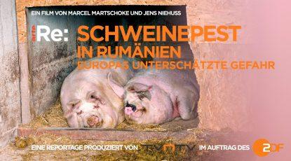 header_TITEL Schweinepest_Homepage1
